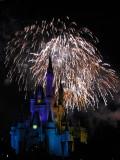 Walt Disney World February 2008