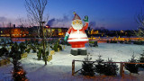 Santa Claus is an early bird guarding the Christmas trees - Sarpsborg, Norway 20´ C below Zero