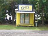 Small dogs need a small SPCA