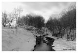 Virgil Creek, downstream view, Kane County