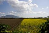 Vesuvian Landscape