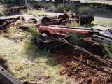 Skeleton Log Car