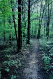 Pinnacle Trail, Nashville, Tennessee, USA
