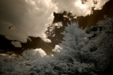 IR (infrared) Skies
