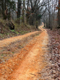 Old Historic Natchez Trace