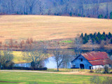 Natchez Trace Farm