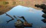 Crummock Water DSC_6366