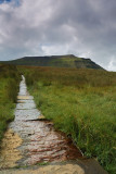 Ingleborough  DSC_0573