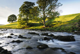 The Wharfe at Burnsall  09_DSC_2197