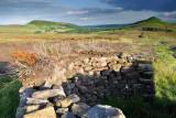 Hawnby Moor  09_DSC_3375