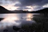Llynnau Mymbyr  10_DSC_1203