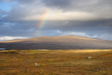 Rainbow over Rannoch Moor  10_DSC_5551