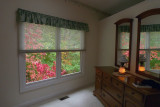 P1010075 Color Thru My Window