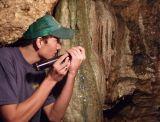 043 Linville Cavern Guide
