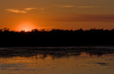 _MG_1104 Ding Darling Sunset