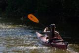 _MG_1577 Kayaker
