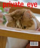 Beegie's Magazine Cover