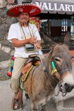 A man and his Burro