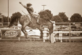 rodeo -2230.jpg