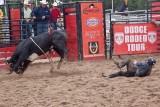 rodeo -2256.jpg