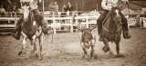 rodeo -2304.jpg