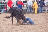 rodeo -2319.jpg