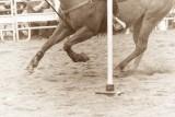 rodeo -2378.jpg