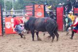 rodeo -2478.jpg