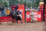 rodeo -2487.jpg