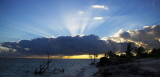 Cuba Jan 2008
