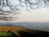 Umbrian countryside7248