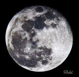 'Wolf Moon
