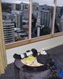 Overlooking Auckland