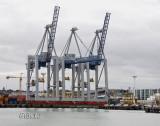 Harbor at Work