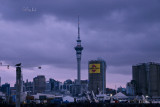 Auckland Settles into Night