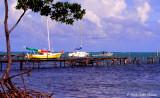 Caye Caulker Boat Vista