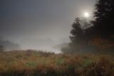 Fall morning mist
