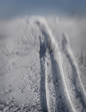 Snowmobile Spoor
