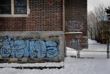 Urban Art???