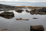 Tidal pools - the calm within the storm
