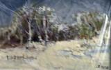 Iarna la marginea padurii(colectie particulara)