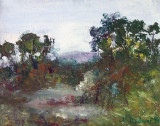 Peisaj(colectie particulara)