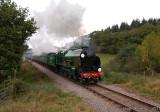 850 in Leigh Woods - West Somerset Railway.