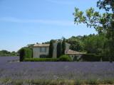 Provence 2009 007.jpg