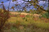 Rainbow of Fall