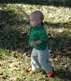 Running in the leaves