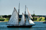The Bluenose