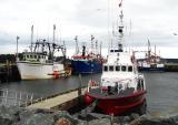 Busy Wharf