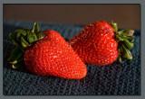 Sunset Strawberries