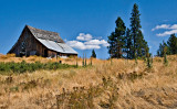Old Barn, Western Montana